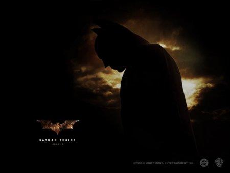 batmanbegins02.jpg