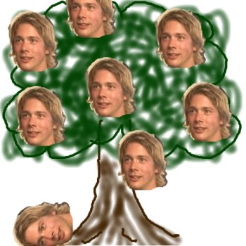 puppy_tree.jpg