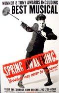 springawakening_poster.jpg